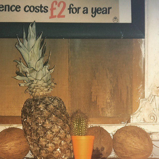 Happy New Year to all our lovely customers, old and new. We hope your 2015 is filled with love, beer, exotic fruit and cacti. Love, Old Red x